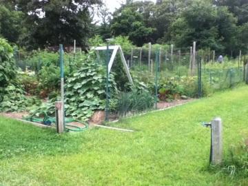 Image of Garden_5